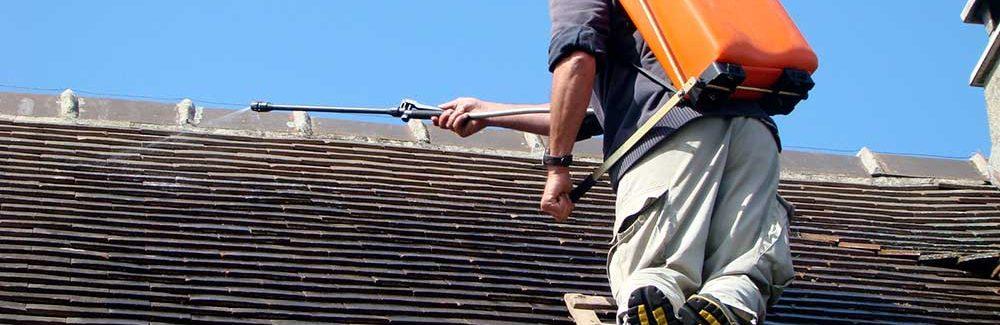 Le démoussage de la toiture : un travail d'entretien indispensable