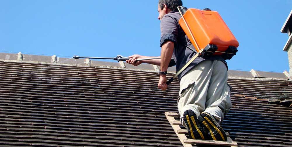 Le démoussage de la toiture : un travail d'entretien ...