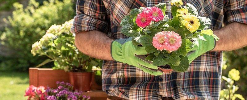 Petit guide pour bien aménager son jardin